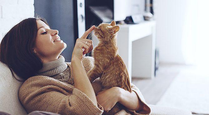 Kedi besleyen yalnızlığı, köpek besleyen arkadaşlığı seviyor