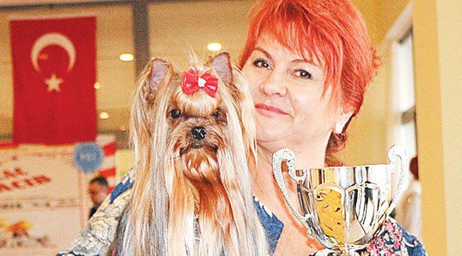Angineska Onuk'un yetiştirdiği üç yaşındaki Rosanegra adlı Yorkshire Terrier ırkı köpek üçüncülüğü elde etti.