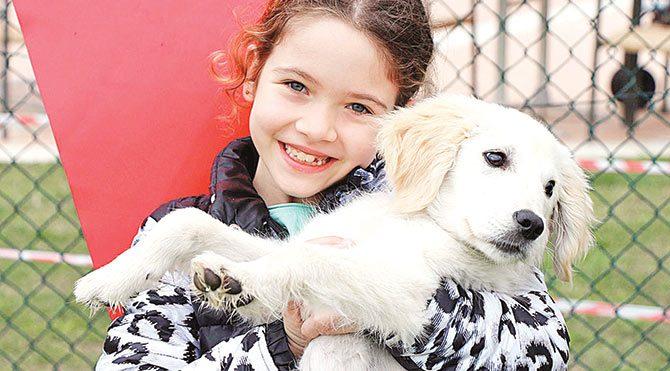 Yarışmada dereceye giremeyenler teselliyi köpeklerine sarılarak buldu.