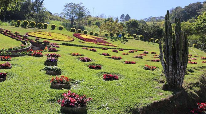 Costa Rica Tico Paradise Viagra Dating