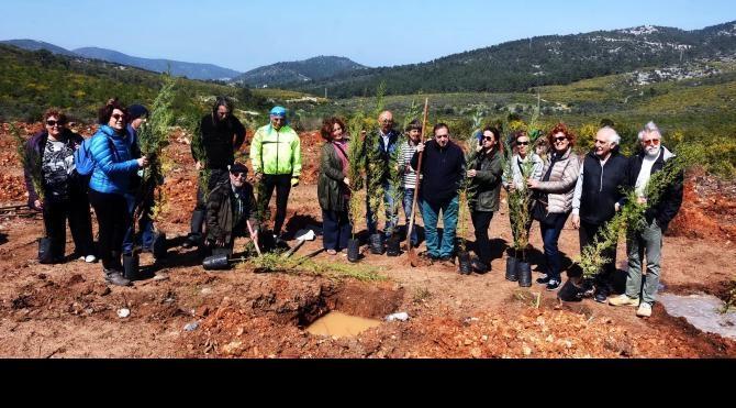 Ankara'da ölenler anısına Bodrum'da akıllı orman