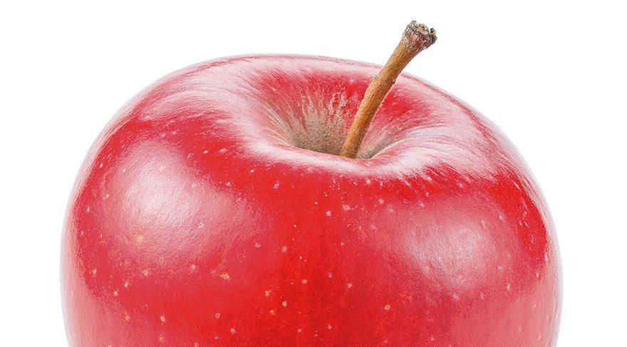 Elma ömrü uzatıyor