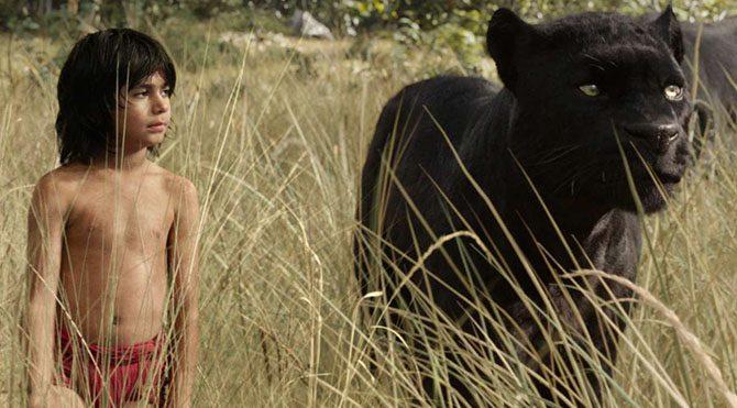 Mowgli, bebekken geldiği ormanda kurtlar tarafından büyütülmüş, siyah panter Bagheera'nın akıl hocalığıyla çok şey öğrenmiş bir çocuktur.