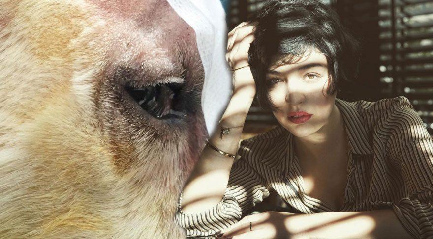 Gonca Vuslateri, dövülen köpek haberine isyan etti