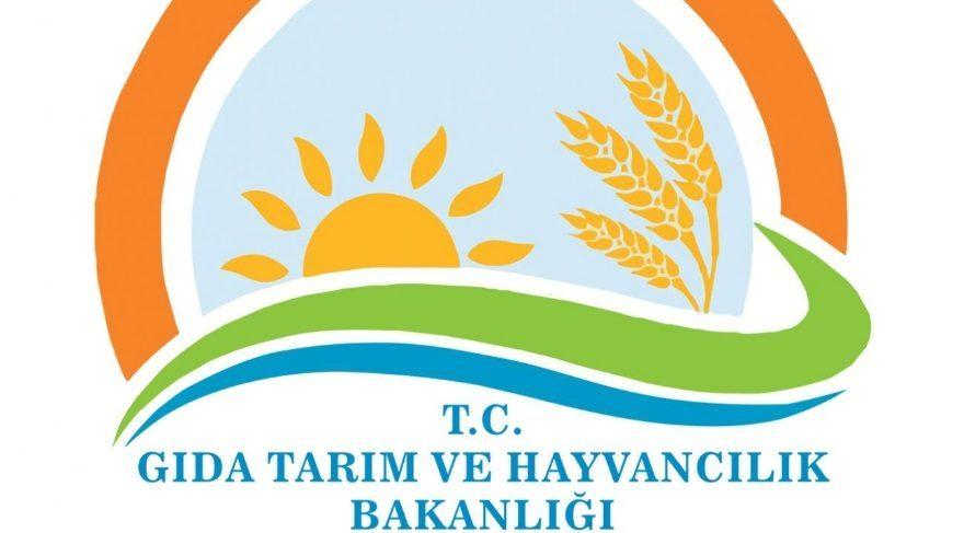 Genç çiftçilere 30 bin lira hibe desteği: GTHB hibe desteği nasıl alınır? Genç Çiftçi hibe başvurusu