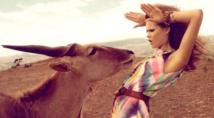 Moda için '50 milyon hayvan' öldürüldü