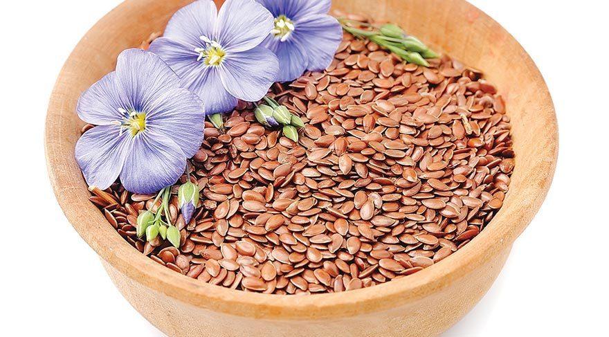 прически картинка семена льна растения все