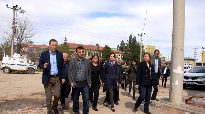 HDP ve DBP'liler İdil'de incelemelerde bulundu