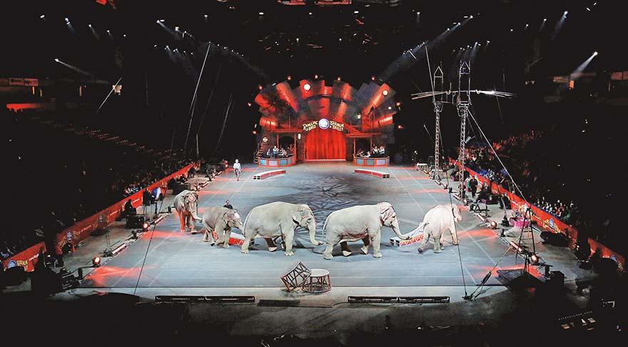 Fillere hüzünlü veda