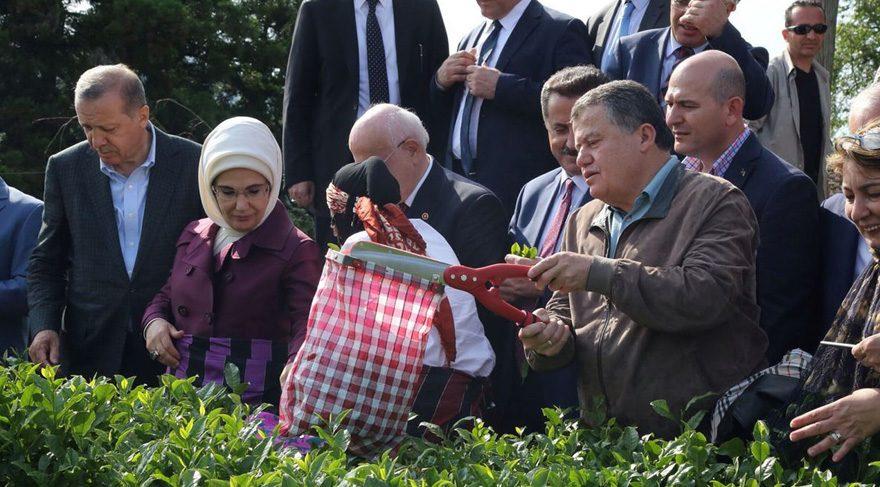 FOTO:DHA - Erdoğan'ın ziyaretine Yargıtay Başkanı Cirit (elinde makas olan) ile Danıştay ve Sayıştay Başkanları katılmıştı.
