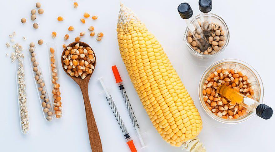 Hakkında bunca söylentiler olmasının sebebi son yıllarda petrolün azalma endişesi ile dünya devlerinin yeni enerji arayışına girmesi ve sonucunda biyoyakıt olarak mısırı kullanmalarıdır.