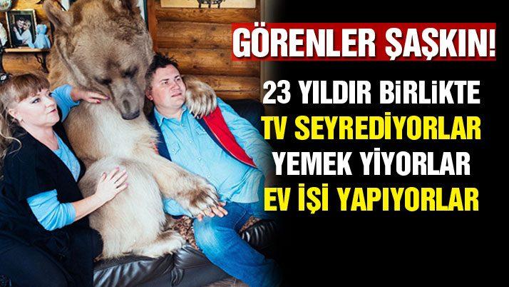 Rusya'da evcil ayı Stephan görenleri şaşkına çeviriyor