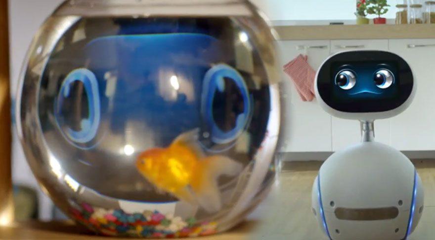 Asus'tan hizmetçi robot