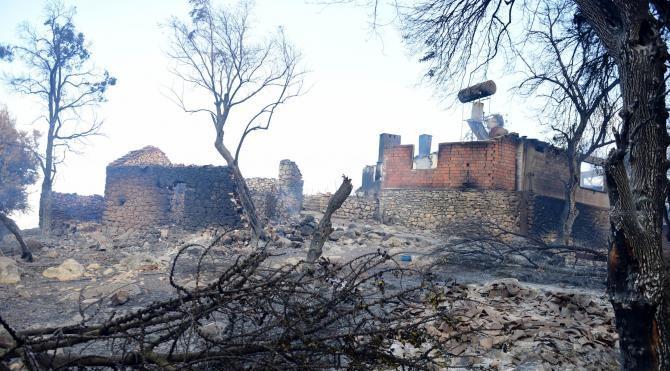 Tatil merkezi Adrasan'da orman yangını (5)