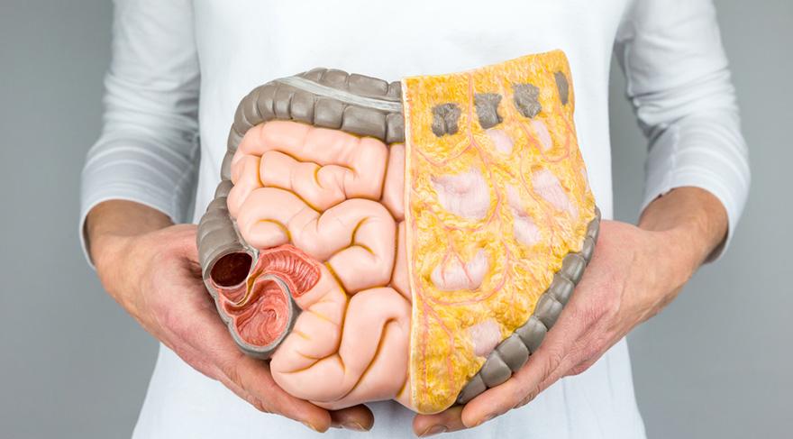 GAPS Diyeti nedir? Sindirim sistemini koruyan 9 besin