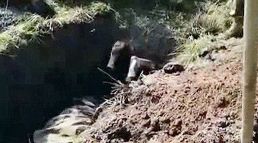 Ukraynalı asker Rus askeri diri diri gömdüler