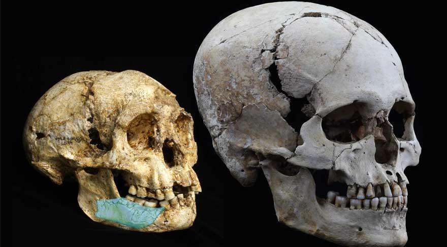 Hobbitlerin 700 bin yıllık ataları bulundu