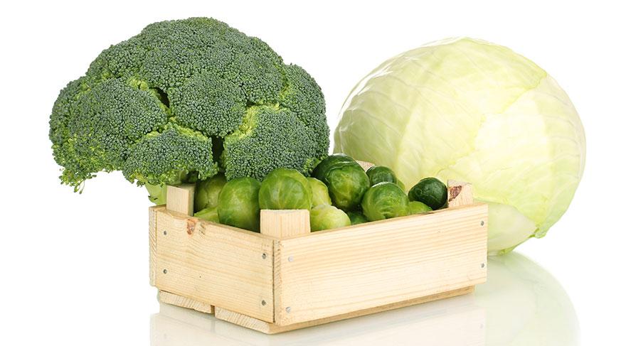 Bu besinlerin yapısında bulunan bileşikler DNA zedelenmesini baskılayan veya bloke eden enzimleri tetikler, tümör büyüklüğünü ve östrojen benzeri hormonların etkinliğini azaltır.