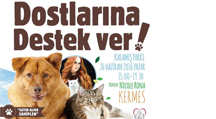 Kadıköy Belediyesi sokak hayvanlarına destek için kermes düzenliyor
