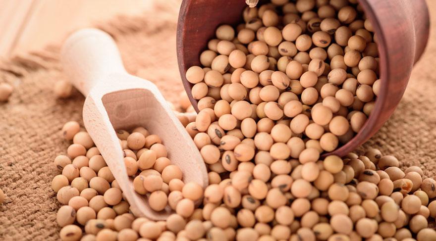 Özellikle menopoz sonrası kadınlarda fitoöstrojenik etki gösteren soya ürünleri önem taşır.