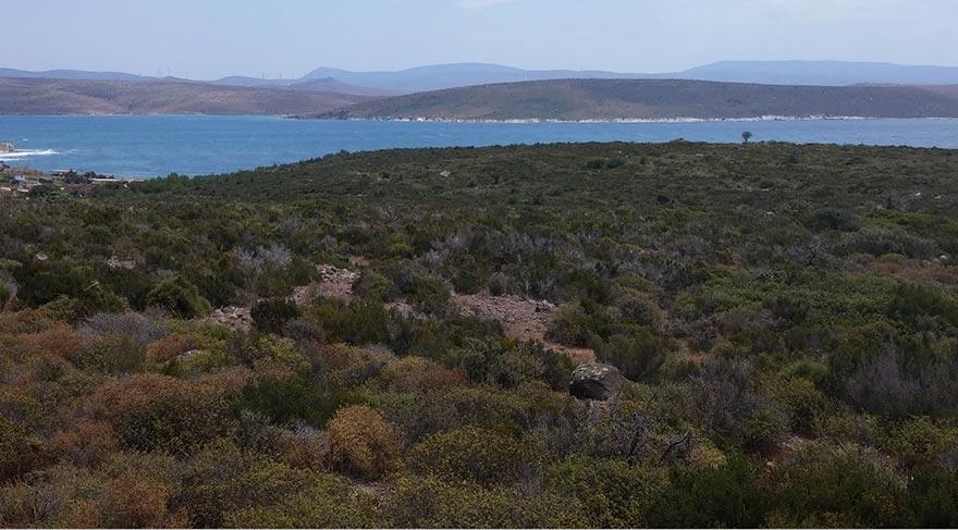 Adalı, 250 odalı oteli 63 milyon lira yatırımla bu araziye yapacak.