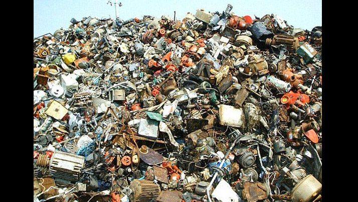 Çöplüğe gizlenen hayvanı görebiliyor musunuz?