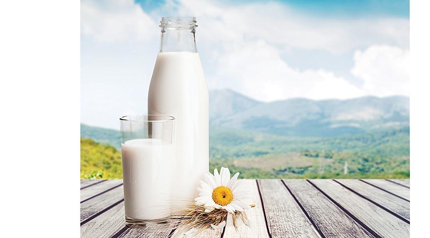 Laktoz hakkında her Sey