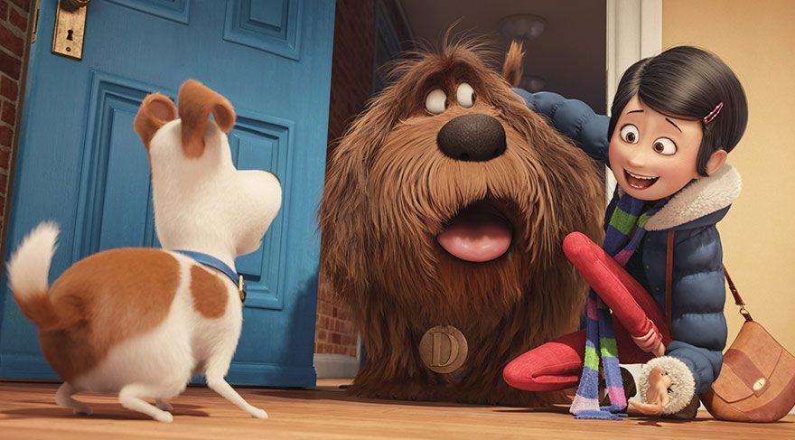 Manhattan'da bir apartman dairesinde sahibi Katie ile mutlu bir hayat yaşayan Terrier türü Max, sahibinin bir gün eve kırma bir köpek olan Luke'u getirmesiyle birlikte gözden düştüğünü hissetmeye başlar.
