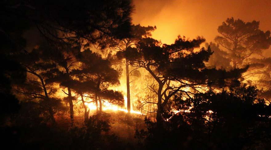 """Résultat de recherche d'images pour """"kazdağları yangını"""""""