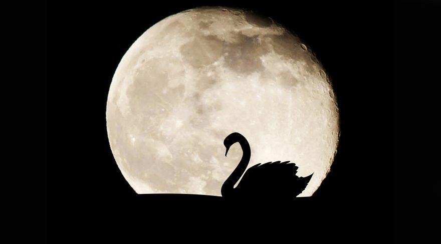 Kova burcunda Ay Tutulmasının burçlar üzerindeki etkisi