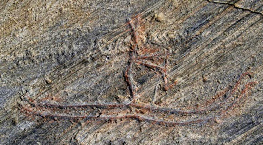 Norveçli çocuk 5 bin yıllık kaya oymasını tahrip etti