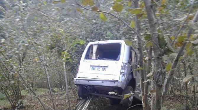 Sürücüyü ölümden fındık ağaçları kurtardı