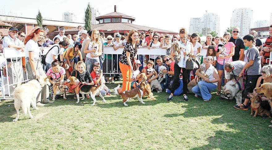 Patilere özel festival