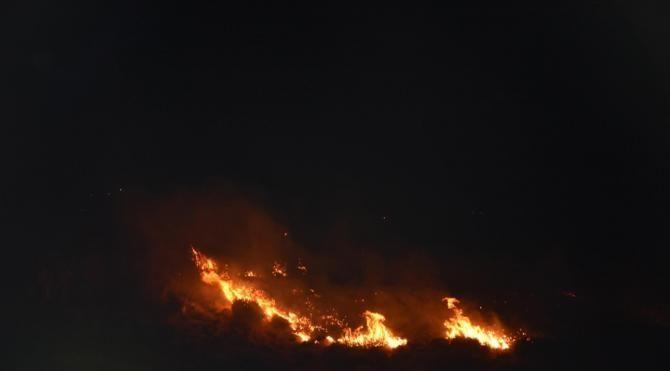 İzmir'de otluk ve makilik alanda yangın çıktı