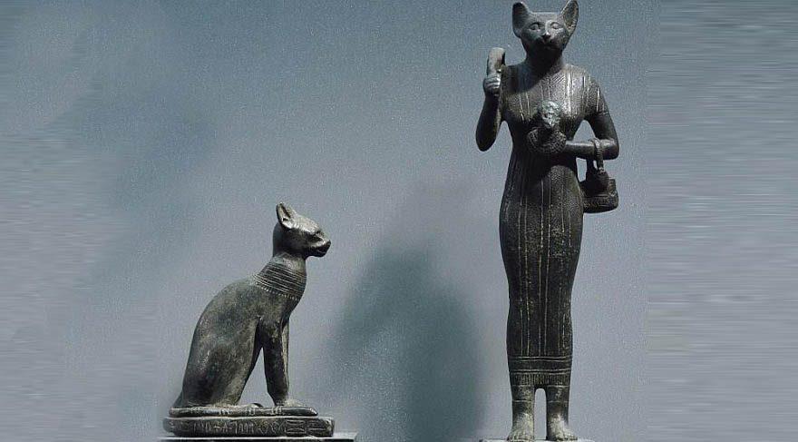 30'dan fazla arkeolojik alanda yapılan DNA analizi kedilerin dünyaya nasıl yayıldığını ortaya çıkardı