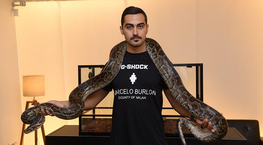 Piton yılanlı tanıtım