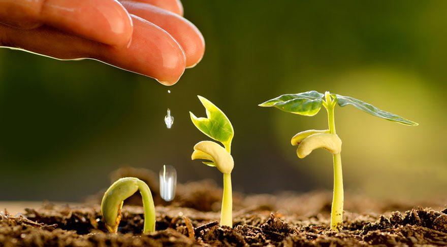 Bu dönem tarım ve çiftçiliğe de daha çok önem verilebilir. Toprakların verimliliklerini arttırmak, çiftçiyi, tarımla uğraşan kişileri motive ve mutlu edecek durumlar meydana gelebilir.
