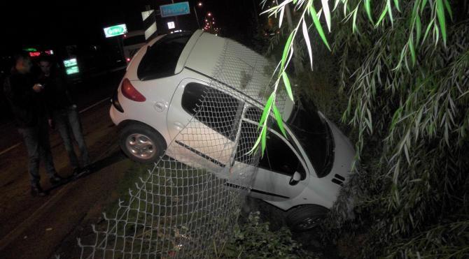 Otomobil çarpan köpek telef oldu, sürücü yaralandı