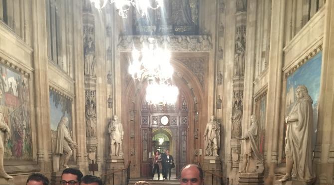 HDP Milletvekili Berdan Öztürk İngiltere Parlamentosu'nda konuştu
