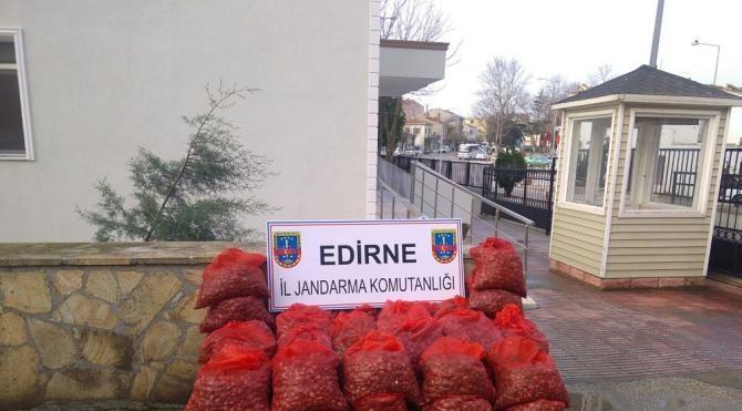 Enez'de 1 ton 200 kilo kaçak midye ele geçirildi