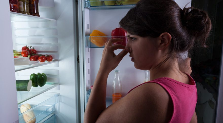 Tatile çıktığınızda yemeklerinizin bozulmadığını nasıl anlarsınız?