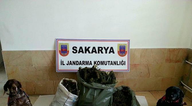 Sapanca'da 16 kilo esrar ele geçirildi