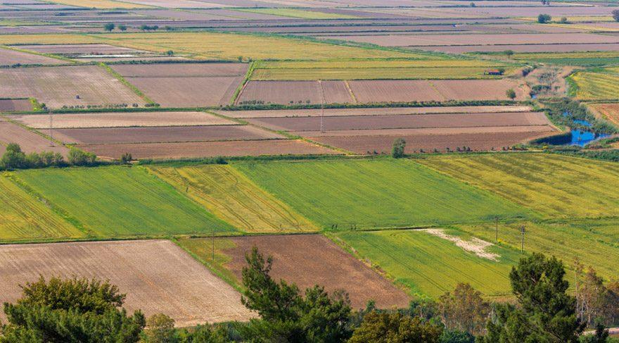 Türkiye'nin tarım alanlarını yok eden tehlike