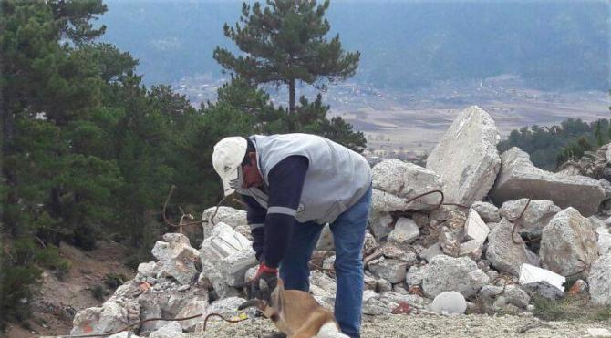 Köpeğin başına geçen plastik bidon kesilerek çıkarıldı