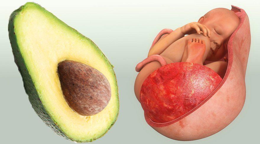 Organlarımıza benzeyen besinlerin faydaları
