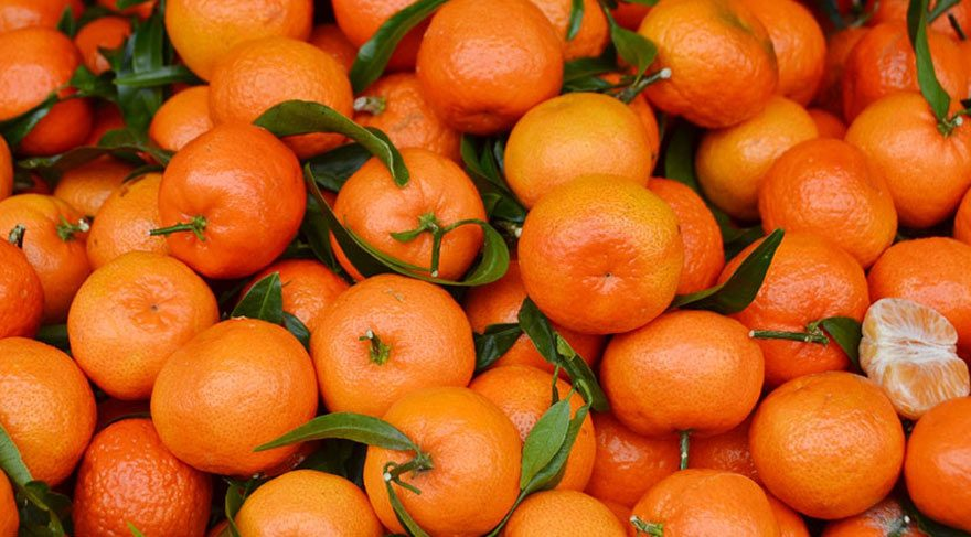 THD: Ukrayna'dan geri gönderilen 29 ton mandalinaya ne oldu?