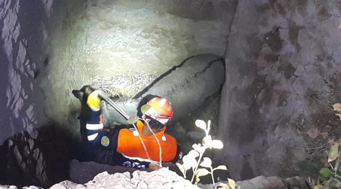 8 metrelik kuyuya düşen eşek kurtarıldı