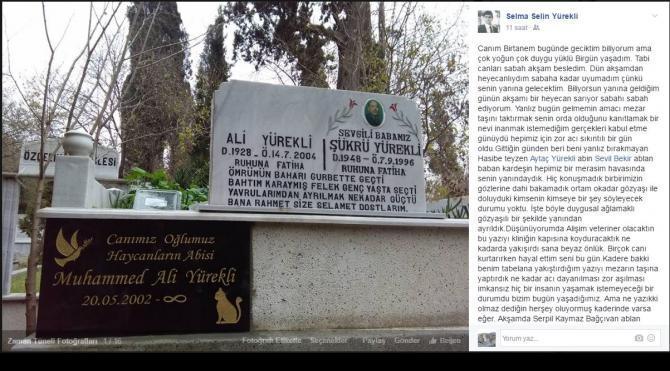 Kalbine yenilen Muhammed'in mezar taşına 'Hay'canların abisi' yazıldı
