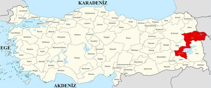 2014 yerel seçimlerinde 11 il belediyesinde DBP/HDP'li adaylar seçimi kazanmıştı.