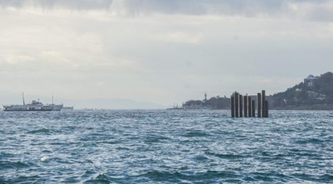 Denizin ortasındaki kazıkların sırrı ortaya çıktı